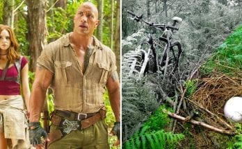 25 Strange Things Found In The Jungle (That Definitely Don't Belong There)