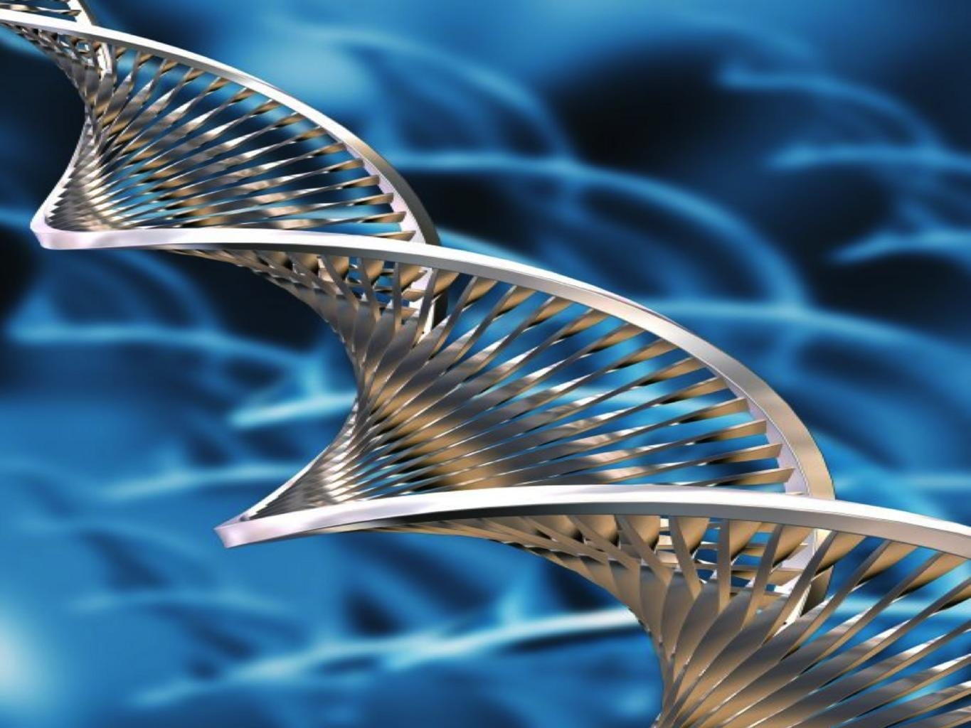 What Is Cell Free Dna And Rna Facts