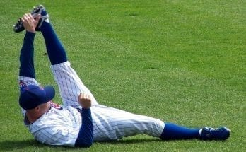 chicago cubs fun facts for kids