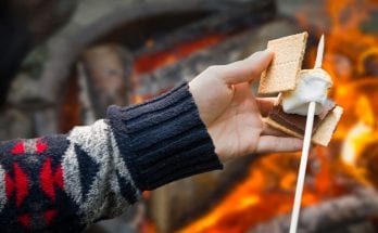 The Science Behind Toasting the Perfect Marshmallow