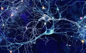How Addiction Occurs in the Brain